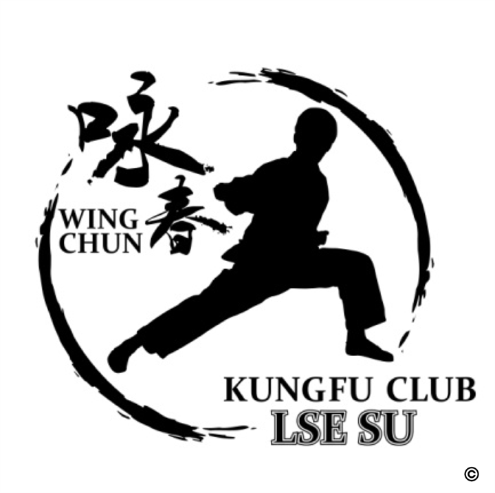 Wing Chun Kung Fu Training Session